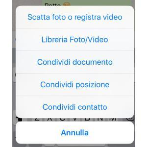 WhatsApp la funzione di invio documenti