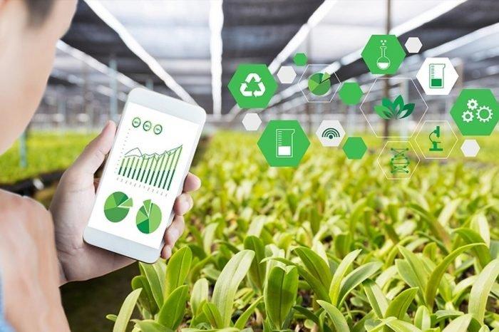 Web marketing per aziende agricole: ecco tutti i vantaggi